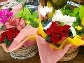 お花を買うなら御殿場の『フラワーハウスはせがわ』へ