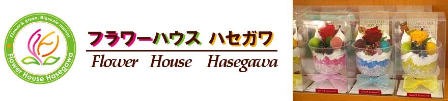 フラワーハウスハセガワの詳細地図